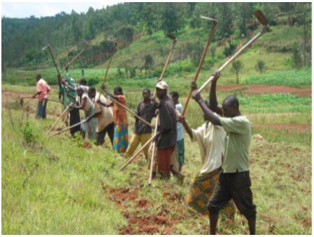 Burundi Economic Sectors