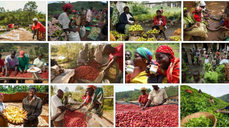 Shopping and Eating in Burundi