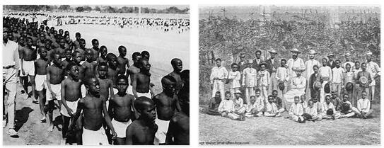 Cameroon History and Politics