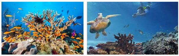 Great Barrier Reef (World Heritage)